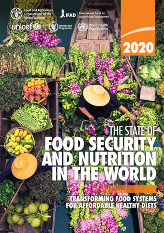 State of Food Security 2020 report