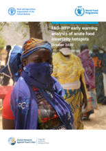 FAO-WFP tidig varningsanalys för hotspots med akut otrygg livsmedelsförsörjning - november 2020
