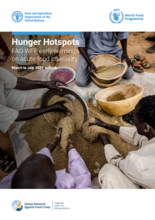 Hunger Hotspots: FAO-WFP early warnings on acute food insecurity (March to July 2021 outlook)