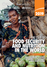 2019 - The State of Food Security and Nutrition in the World (SOFI)